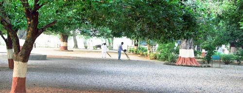 sevagram-ashram-surrounding